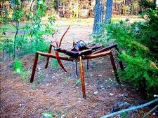 CFBG Bug Sculpture - Fayetteville NC