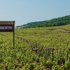 Chambertin Vineyard Sign-Board - Côte De Nuits Subregion Of Burgundy