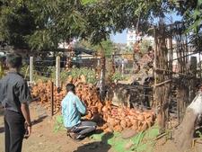 Chandrapur Clay Pots