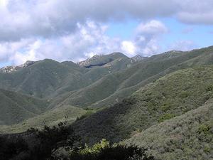 Chaparral Montaña