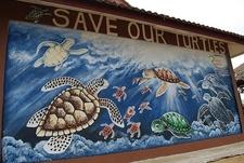 Cherating - Turtle Sanctuary Mural