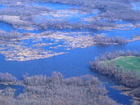 Chickahominy Lake