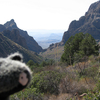 Chisos Basin Loop Trail