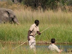 Chobe-Okavango Delta, Victoria Falls Fotos