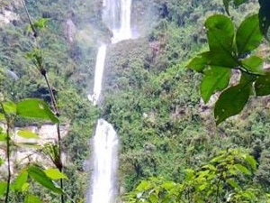 Tour To The Nature Waterfall Of La Chorrera Photos