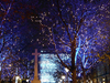 Christmas Lights In Sloane Square