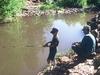 Christopher Creek Fishing