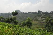 Ciater Indonesia