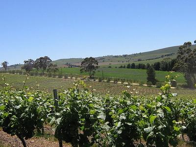Clare Valley (wine Region)