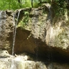 Clark Creek Natural Area