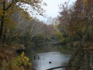 Clarks Río