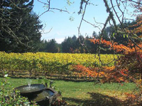 Oak Knoll Winery
