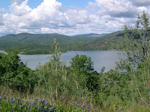 Collins Lake