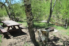 Columbine Campground - Toiyabe Crest Trail