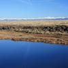 Conejos River Colorado