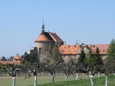 Convent-in-Ostrzeszów