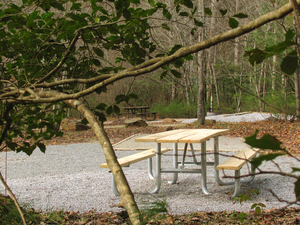 Cooper Creek Recreation Area
