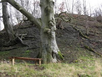 Cornhill  Castle  Mound
