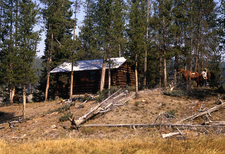 Cougar Creek Patrol Cabin - Yellowstone - USA
