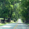 Country Road In Kentucky