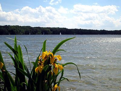 Cowan Lake