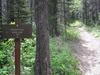 Cracker Lake Trail Intersections - Glacier - USA
