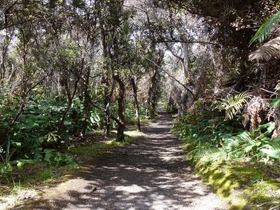 Crater Rim Trail
