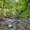 Creek Chestnut Ridge Park