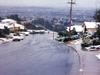 Crestmoor Snow