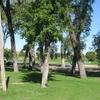 Crookston Central Park Campground