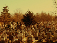 Csepel cementerio
