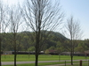 Cullowhee  Valley  School