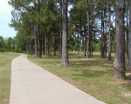 Cypress Tree Golf Course - Curso 1