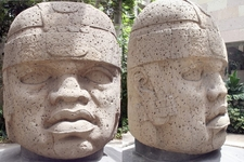 A Giant Olmecs Head In The Museum