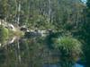 Carnarvon Creek And Gorge