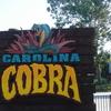 Carolina Cobra