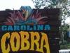 Carolina Cobra Sign