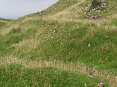 Castell Dinas