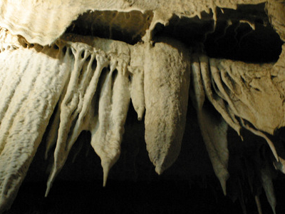 Cave Drapery  In  Boyden  Cave