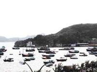 Cat Ba Town Port
