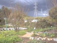 CERES Comunidad Environment Park