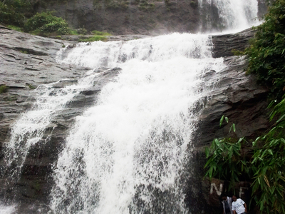 Cheeyappara  Waterfalls  Adimaly Kerala