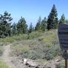 Trailhead Into The Chumash Wilderness