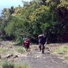 Trekking Cliff 1
