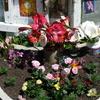 Coogee Shrine