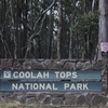 Coolah Tops National Park