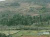 Coper Mine View
