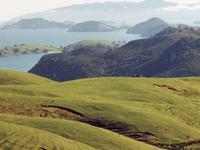 Coromandel Range