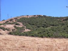 Coyote Peak