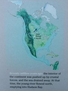 Coastline Map View
